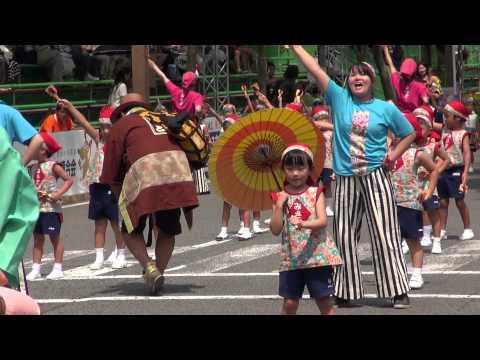 学校法人沢田学園みさと幼稚園 第62回よさこい祭り 本祭1日目 追手筋 北側