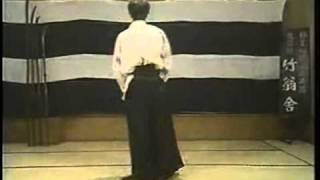Crazy Martial Arts DemoVideo