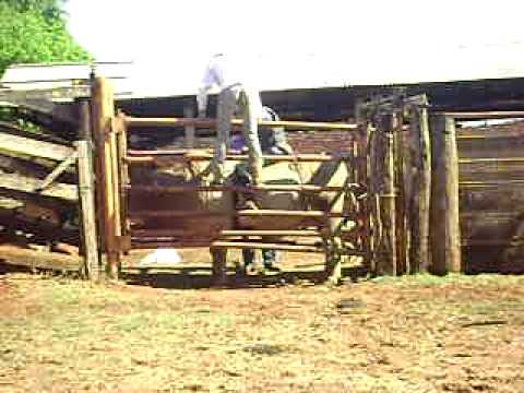 Dione x Estradeiro-Cia MAP-Guarani D' Oeste-Sp