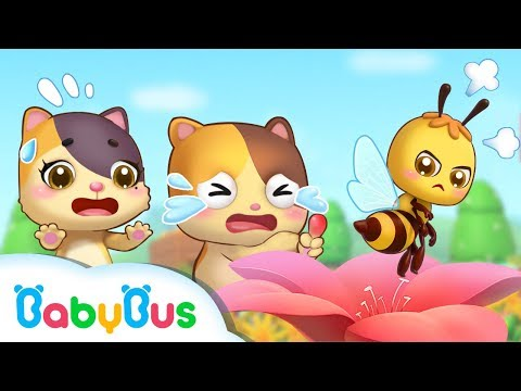 Baby Kitten, Be Careful Of Little Honeybee | Kids Safety Tips | Baby Kitten Family | BabyBus