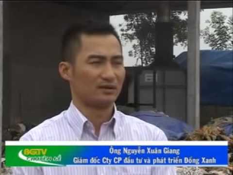 Hiệu quả lò đốt rác thải sinh hoạt tại thị trấn Đồi Ngô, huyện Lục Nam, Bắc Giang