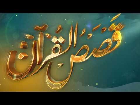 الحلقة (19) برنامج قصص القرآن
