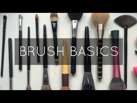 Brush Basics/Staples | SydBiscuit