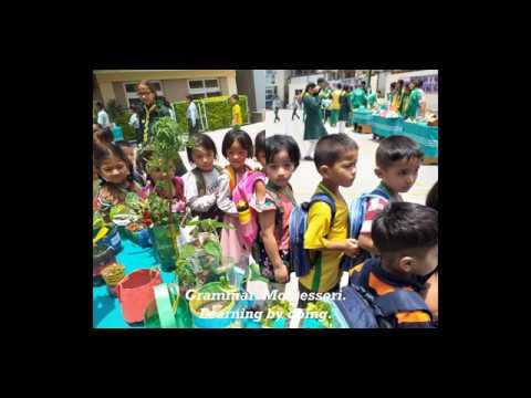 Grammar Montessori Kids Video