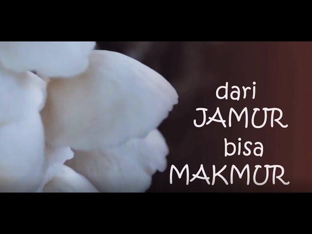 Budidaya Jamur : Dari Jamur bisa Makmur