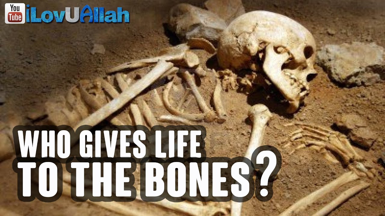 Who Gives Life To The Bones?