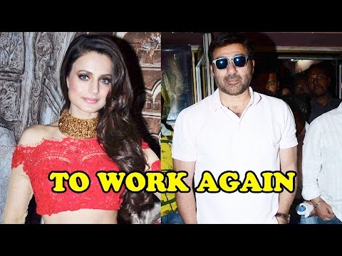 Ameesha Patel Reveals On Working With Sunny Deol A