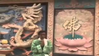 Tổng Hợp Nhạc Phật Giáo Hay Nhất ' Hãy Cùng Yêu Thương '   Full HD