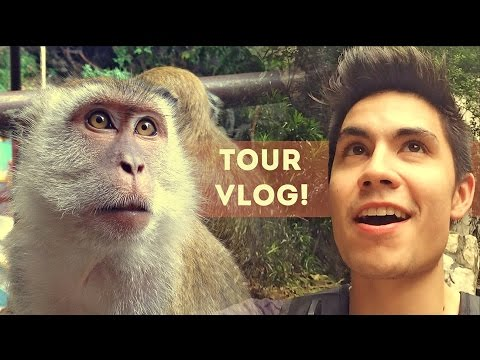 monkey - SUBSCRIBE for more music and vlogs! http://www.youtube.com/subscription_center?add_user=thesamtsui This summer, I embarked on a tour of southeast Asia with Kurt Schneider and some great friends...