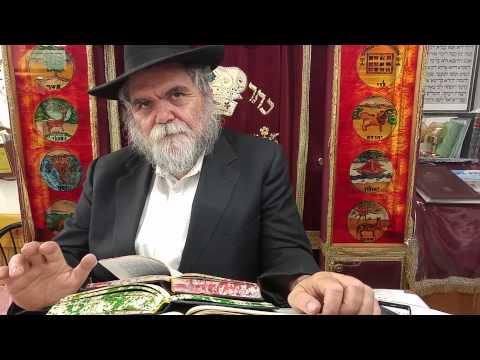 פרשת שופטים וידיאו 6 דקות עם הרב שרגא