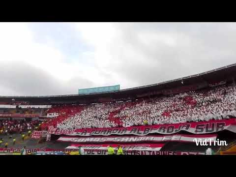 LA GUARDIA ALBI-ROJA SUR VS RAMERICA - La Guardia Albi Roja Sur - Independiente Santa Fe - Colombia - América del Sur