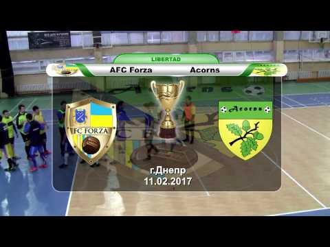 AFC Forza — Acorns (обзор)