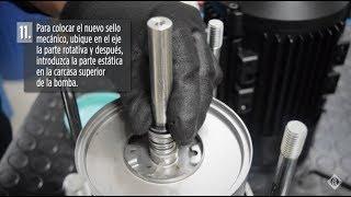 Cómo Cambiar el Sello Mecánico de la Serie CVI, Multietapa Vertical
