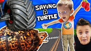 Video RAN OVER TURTLE! 😩Eww Blood😠 Mom vs. Dead Snake Skin HAHAHA (FUNnel Vision Pet Smart Habitat Vlog) MP3, 3GP, MP4, WEBM, AVI, FLV Oktober 2017
