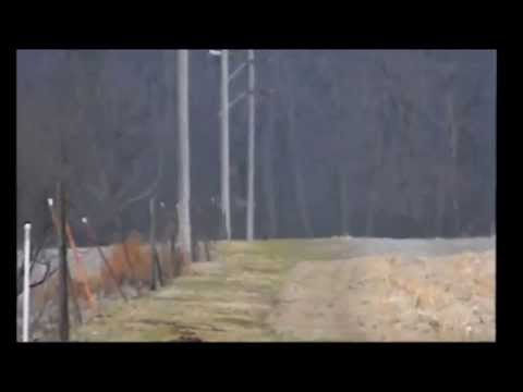 Bigfoot Spotting in Ohio Video Breakdown