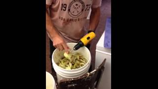 עוזרת חדשה במטבח: מברגה חשמלית