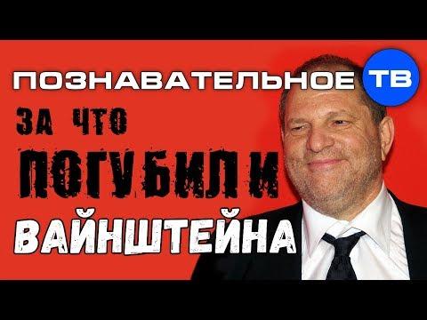 За что погубили Вайнштейна (Познавательное ТВ Елена Гоголь) - DomaVideo.Ru