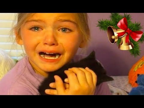 KIDS REACTIONS To Kitten And Puppy Surprise On Christmas Compilation 2017