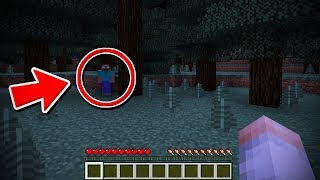 HEROBRINE SIGHTING IN MINECRAFT 1.13 UPDATE!