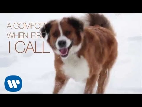 Ron Sexsmith - Saint Bernard (Official Lyric Video)