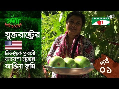 Yard farming | EPISODE 01 | HD | Shykh Seraj | Channel i | আঙিনা কৃষি |