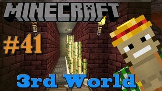 Sweet Sweet Suga! - Minecraft 3rd World LP #41