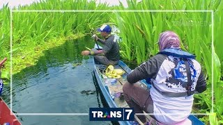 Video MANCING MANIA - KERANDANG AIR HITAM (24/9/16) 3-2 MP3, 3GP, MP4, WEBM, AVI, FLV Agustus 2018