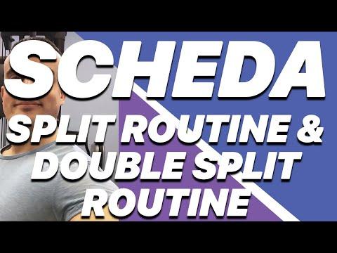 Split Routine e Double Split Routine - Cosa sono e come puoi usarle