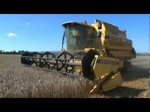 Video HARVESTING WHEAT -  from ' bee bright - OUT AND ABOUT ON THE FARM - INCREDIBLE CROPS!' download in MP3, 3GP, MP4, WEBM, AVI, FLV January 2017