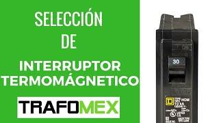 Video Como seleccionar un interruptor termomagnético MP3, 3GP, MP4, WEBM, AVI, FLV Agustus 2018