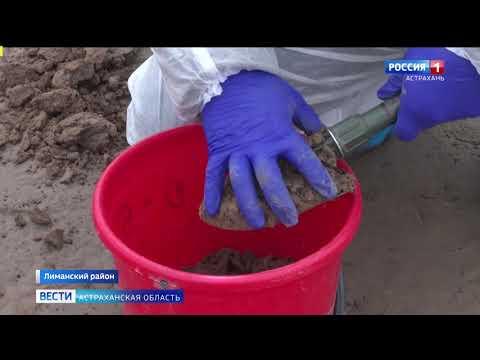 В Астраханской области Управлением Россельхознадзора выявлено перекрытие земельного участока сельхозназначения технической солью