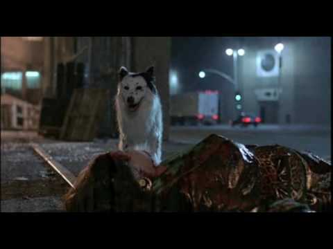 Alien Dog In THE HIDDEN (1987)