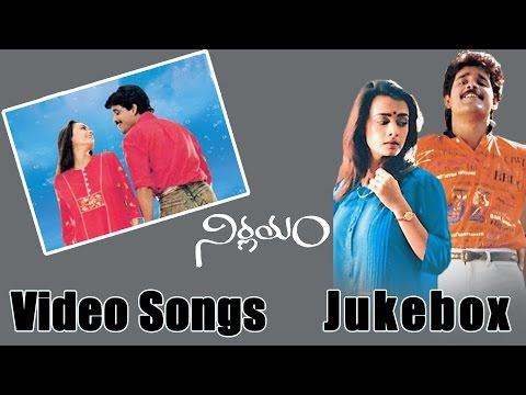 Nagarjuna Birthday Special || Nirnayam Movie Video Songs Jukebox || Amala