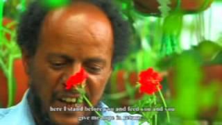 Yale Sete Part 1 - Ethiopian Movie