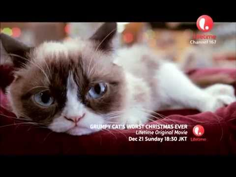 Grumpy Cats Worst Christmas Ever Tv Trailer