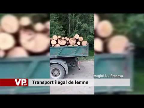 Transport ilegal de lemne
