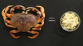 How To Eat Fresh Crab - Kitchen Conundrums with Thomas Joseph by Everyday Food