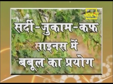 Use of Acacia in cold, cough and sinus| Acharya Balkrishna