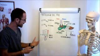 Umh1729 2012-13 Lec020 Patología Del Pie