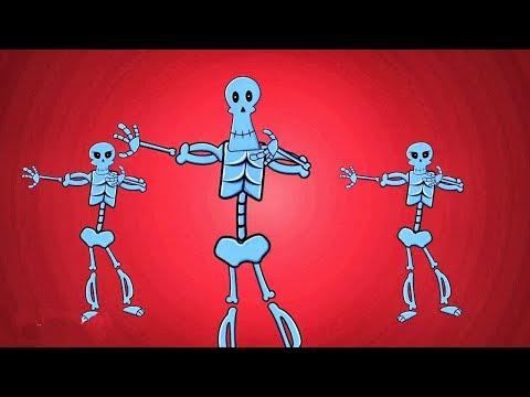 El Baile de Las Calaveras | Los esqueletos | Día de Los Muertos | Halloween Canciones Infantiles