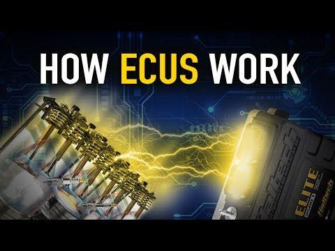💬 How ECUs Work - Technically Speaking