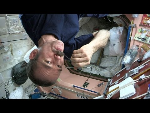 space - Jamie and Adam chat with astronaut Chris Hadfield about the limitations of food preparation on board the International Space Station. While astronauts can't ...