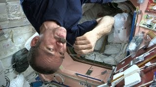 Video Astronaut Chris Hadfield and Chef David Chang Test Gourmet Space Food MP3, 3GP, MP4, WEBM, AVI, FLV Juni 2019