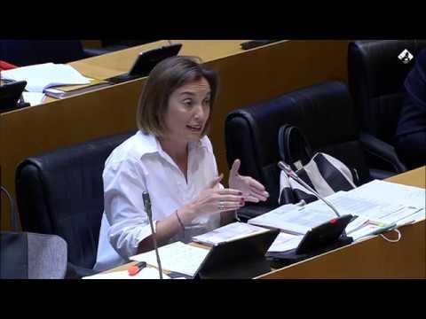 Cuca Gamarra en la Comisión de Sanidad