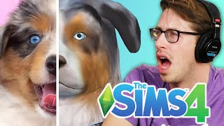 Download Youtube: Keith Controls His Friends' Pets In The Sims 4 Cats & Dogs