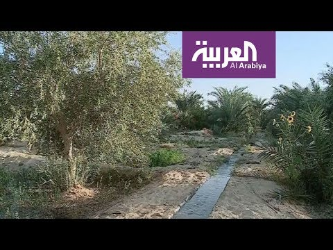 العرب اليوم - شاهد:تركُز التجمعات الحضرية حول الأنهار والواحات والبحيرات