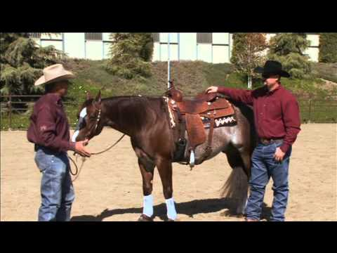 Bob Avila Saddle Pads