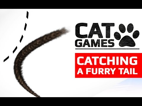 CAT GAMES - CATCHING A BLACK TAIL (ENTERTAINMENT VIDEOS FOR CATS TO WATCH)