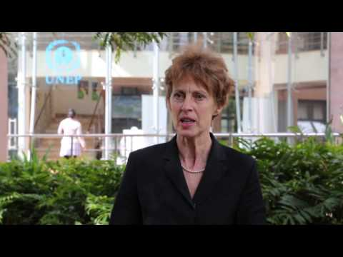 Jacqueline McGlade - Eye on Earth Summit 2015