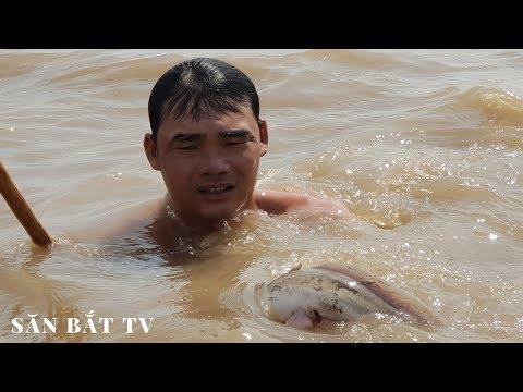 Đạp Hang Bắt Cá Ngát Kiếm Tiền Triệu| Săn Bắt TV - Thời lượng: 42:51.